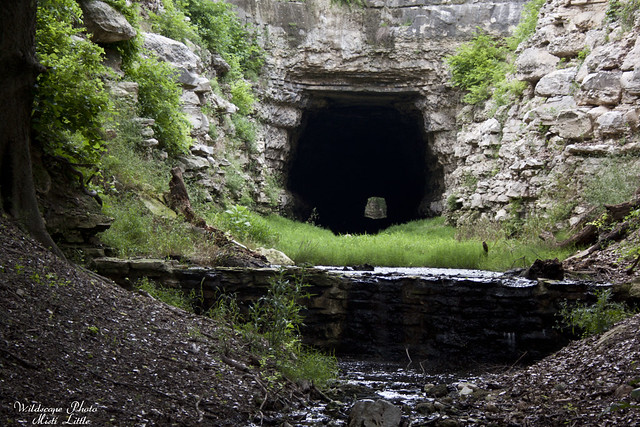 oldtunnelwma
