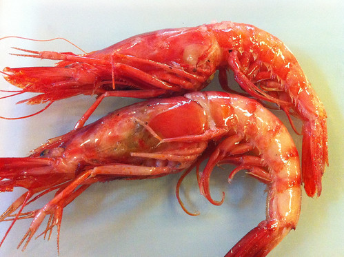 Prawns from Palamos