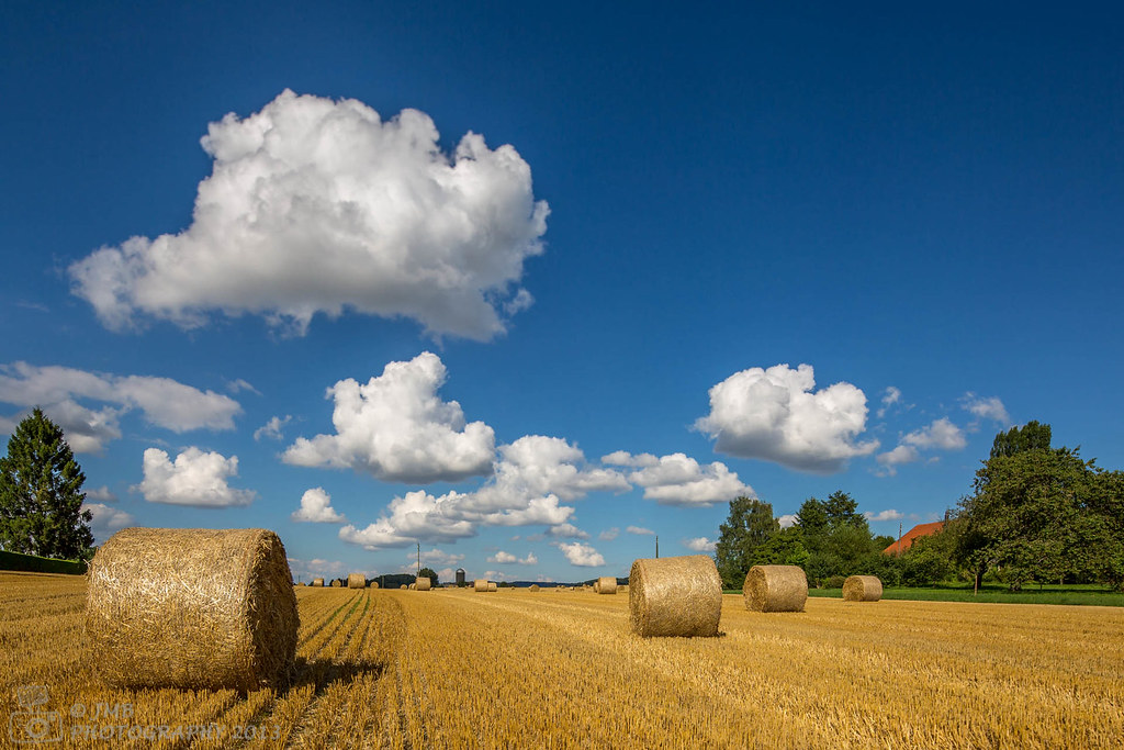 IMAGE: http://farm8.staticflickr.com/7437/9482727413_69632c32fd_b.jpg