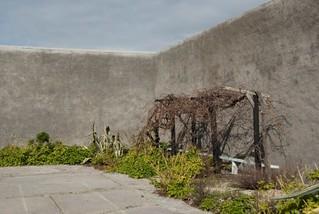 Mandela's prison garden