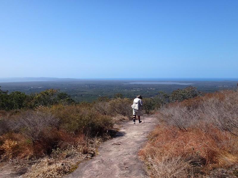 Climbing Mt Tinbeerwah
