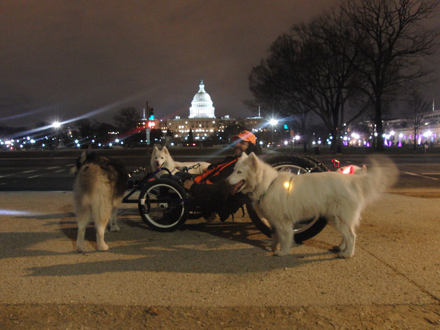 WooFDriver On Tour - Mt.Vernon & National Mall 12.03.2012