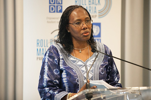 Fatoumata Nafo-Traoré at RBM & UNDP Launch of the Action Framework for a Multisectoral Approach to Malaria