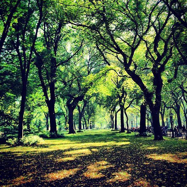 Central Park Literary Lane