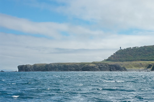 【写真】2013 : 知床半島遊覧船-往路2/2020-09-01/PICT2282