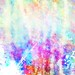 RBF_10.13_lgtex_1_009