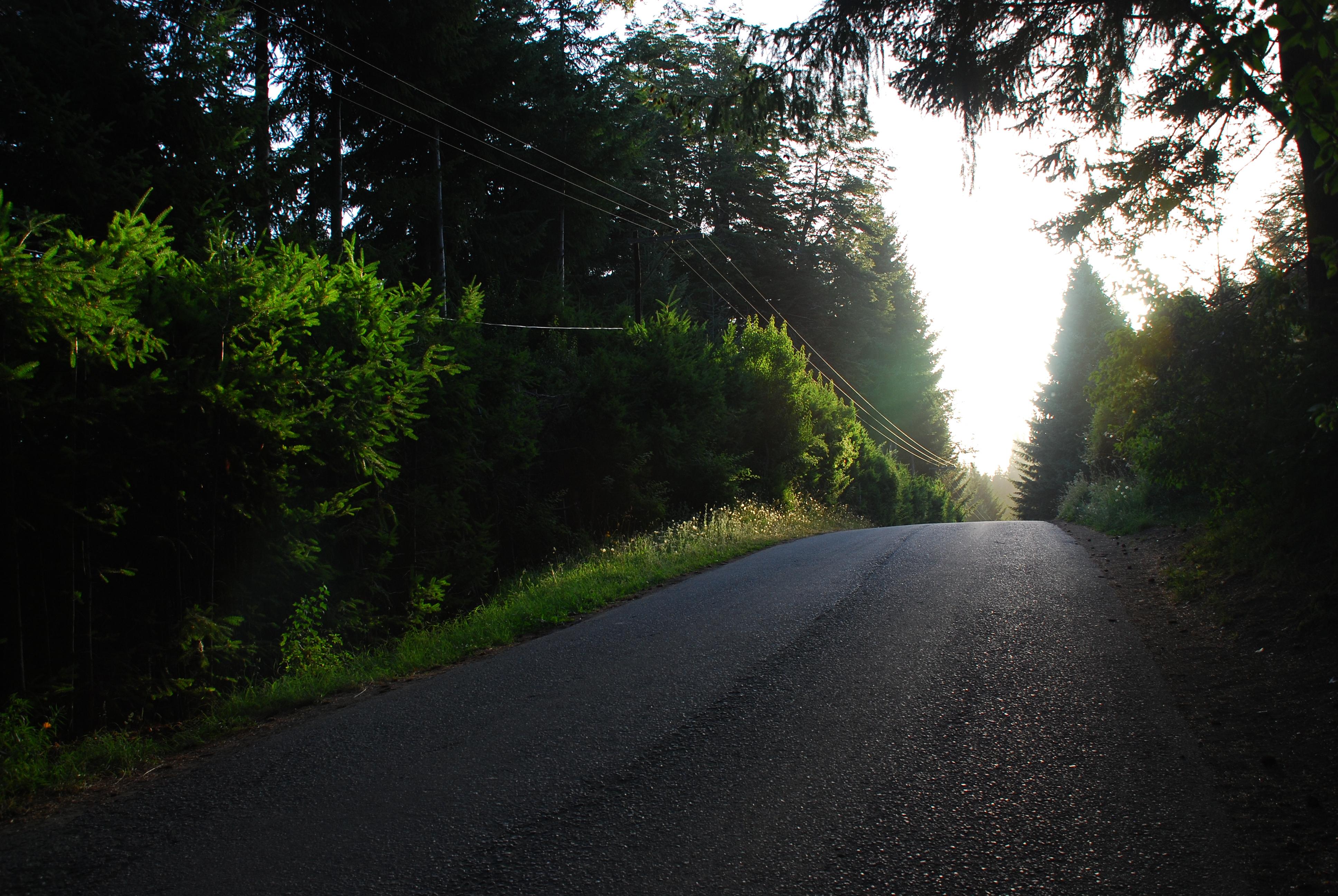 Camino de Bahía Manzano