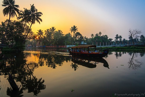 Serene Backwater Sunrise