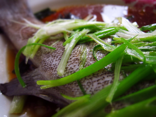 classic, cantonese, steamed, fish, chinese, recipe, chinese steamed fish