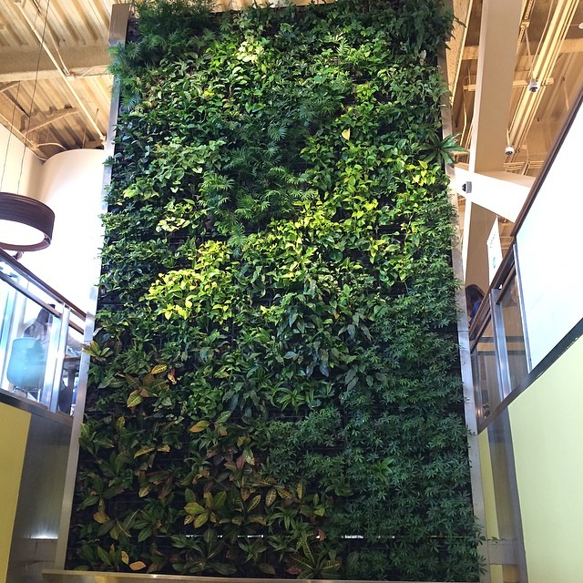 hanging gardens of whole foods #sxsw