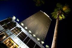 Trump Las Vegas (8)