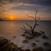 Sanibel Sunrise by Jim•Hunt