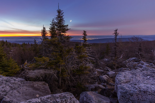 morning westvirginia dollysods