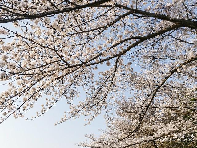 20140327山陽D2熊本-1130212