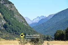 J1 Mavora track Nouvelle-Zélande
