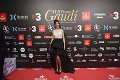 Catifa vermella VII Premis Gaudí (55)