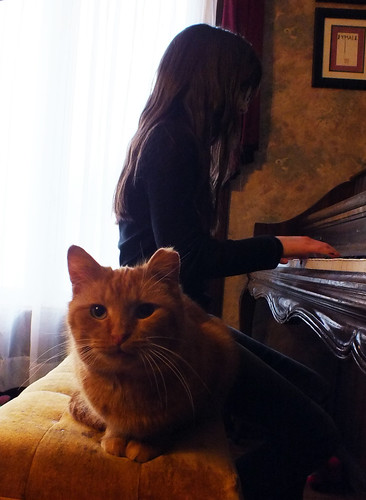 Fluffy Ufferton at the piano with Julia
