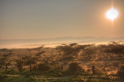 fog sunrise kenya ke nakuru hdr lakenakuru riftvalleyprovince lakenakurunationalpark