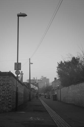 Newton's Walk to university