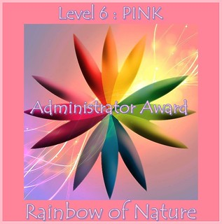 RoN_6Pink_Adm