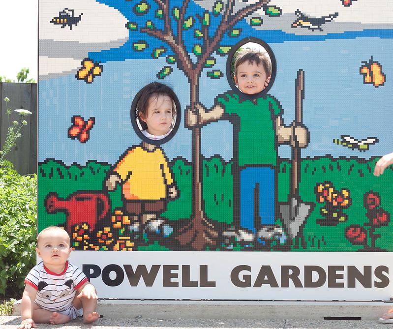powell gardens 059