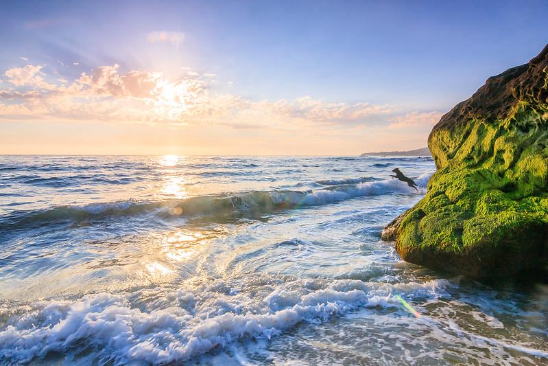 Pearl St Beach-9796