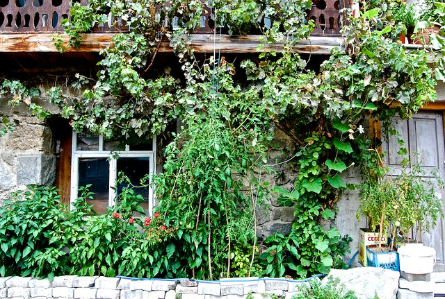 Göynük gardens
