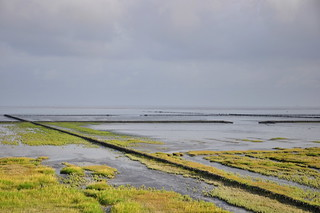 FV Flickr Top 5: Waddensea