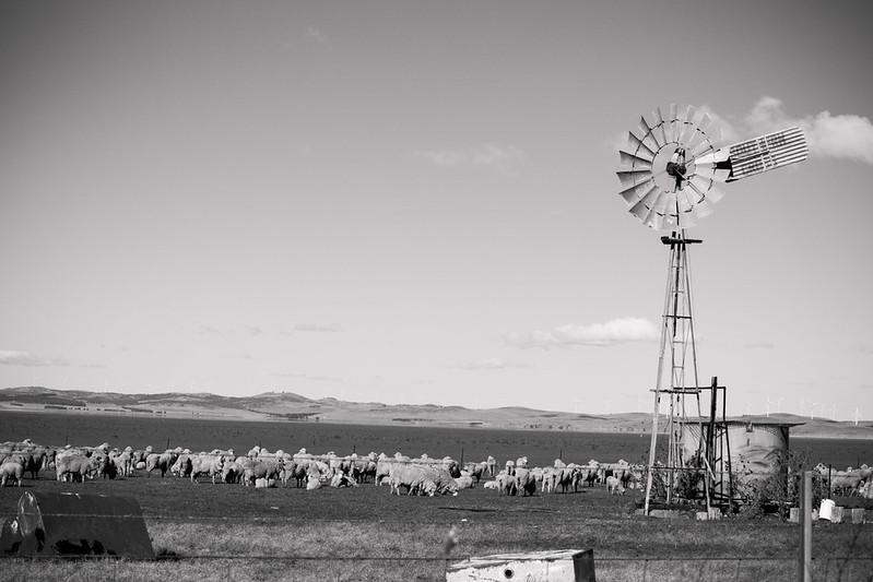 Windmill_Canberra,AUS_G.LHeureux-0458