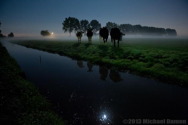 FV Flickr Top 5; 2-35, Runner-Up: Curious girls at night....#1
