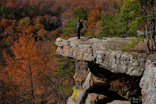 autumn trees winter fall nature forest outdoors rocks hiking arkansas bluffs ozarks ozarknationalforest greglewis gmichaellewis