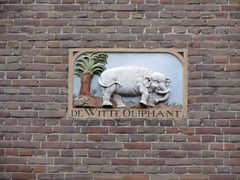 Amsterdam gevelsteen De Witte Oliphant