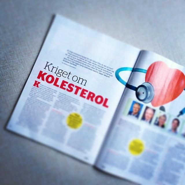 Högt kolesterol - farligt? Jag skriver om debatten i senaste Allt om LCHF (Expressen). Jag har även intervjuat Åse Falkman Fredrikson om hennes nya bok, reder ut hur man blir kvitt sitt sockerberoende och tipsar om sköna prylar som värmer i kylan