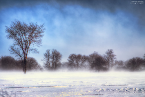 winter snow cold landscape thephotographyblog