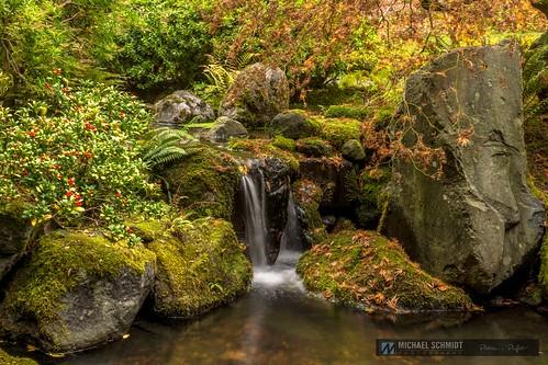 2013-10-26 Oregon Portland Japanese Garden Maple Pond Garden Waterfall-1
