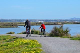 En bicicleta por la Bahía de Cádiz. Foto: David Ibáñez Montañez.