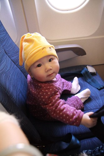 Lulu\'s first traveling by plane