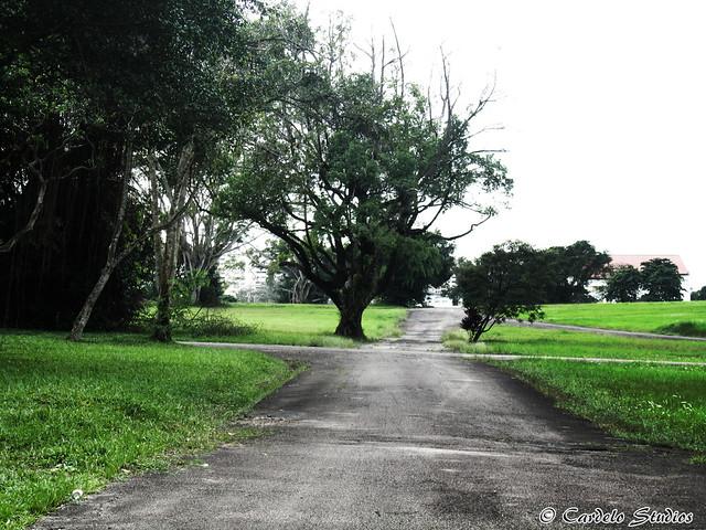 Bidadari Christian Cemetery 02