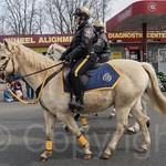 Bergen County Sheriff Officers on Horseback , 2014 Bergen County St. Patrick`s Day Parade, Bergenfield, New Jersey