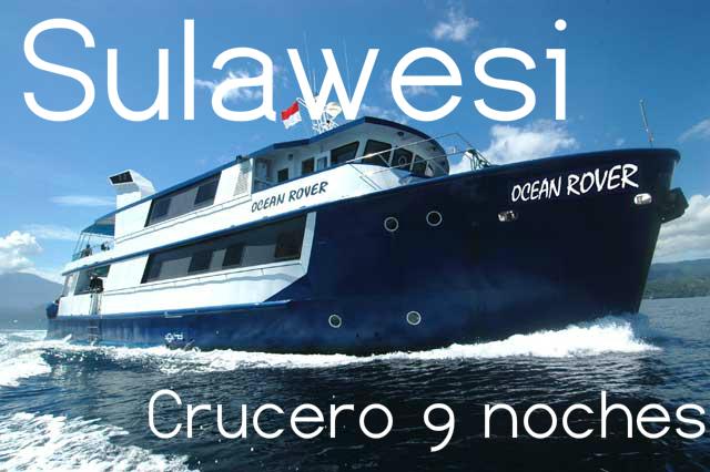 Viaje buceo Sulawesi