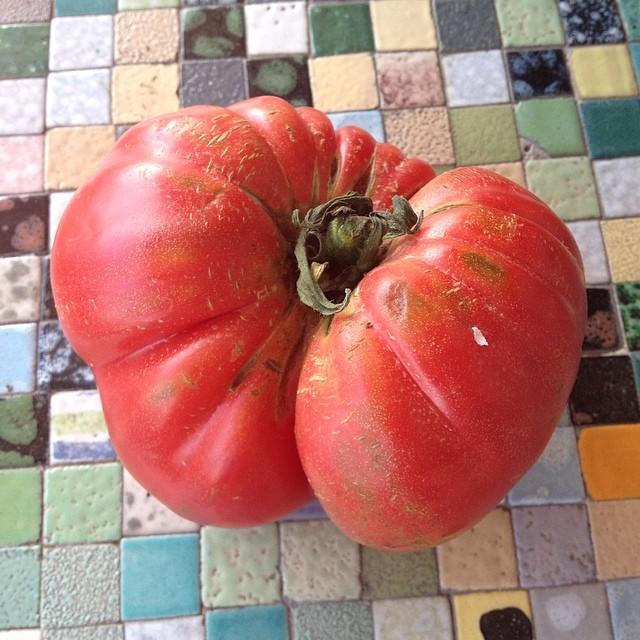 Alucinando con los tomates que se encuentra uno en los mercados a primeros de mayo...