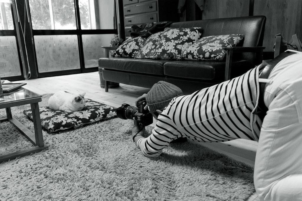 カメラマン VS ネコ