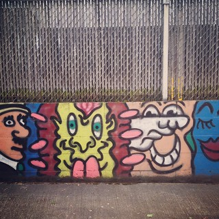 Fence faces