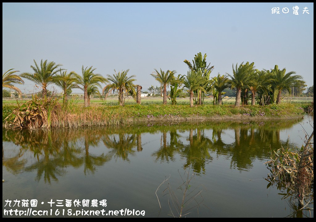 九九莊園‧十三番休閒農場DSC_6408