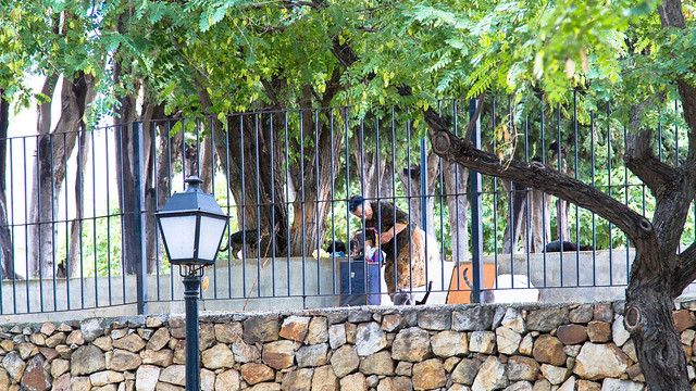 The Cat Lady of Marbella