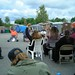 11574_OutdoorCouncilMtg_Democracy_2006 by Kwamba Productions