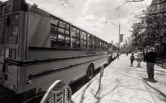 Bus line 1