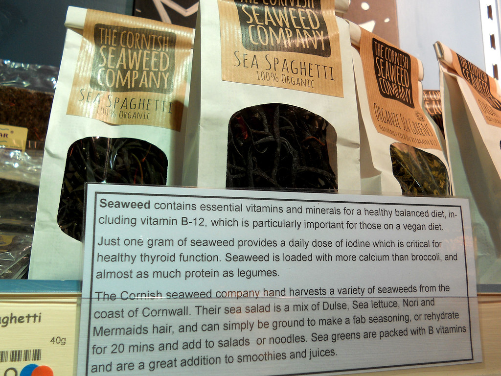 educational seaweed display