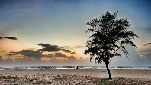 sunset sky india tree beach clouds sand incredible