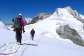 Gletscherquerung unter der Bellavista mit Blick auf Piz Bernina, 4049 m. Foto: Günther Härter.